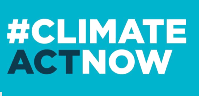 Support the Climate Change Bill - Make a Submission